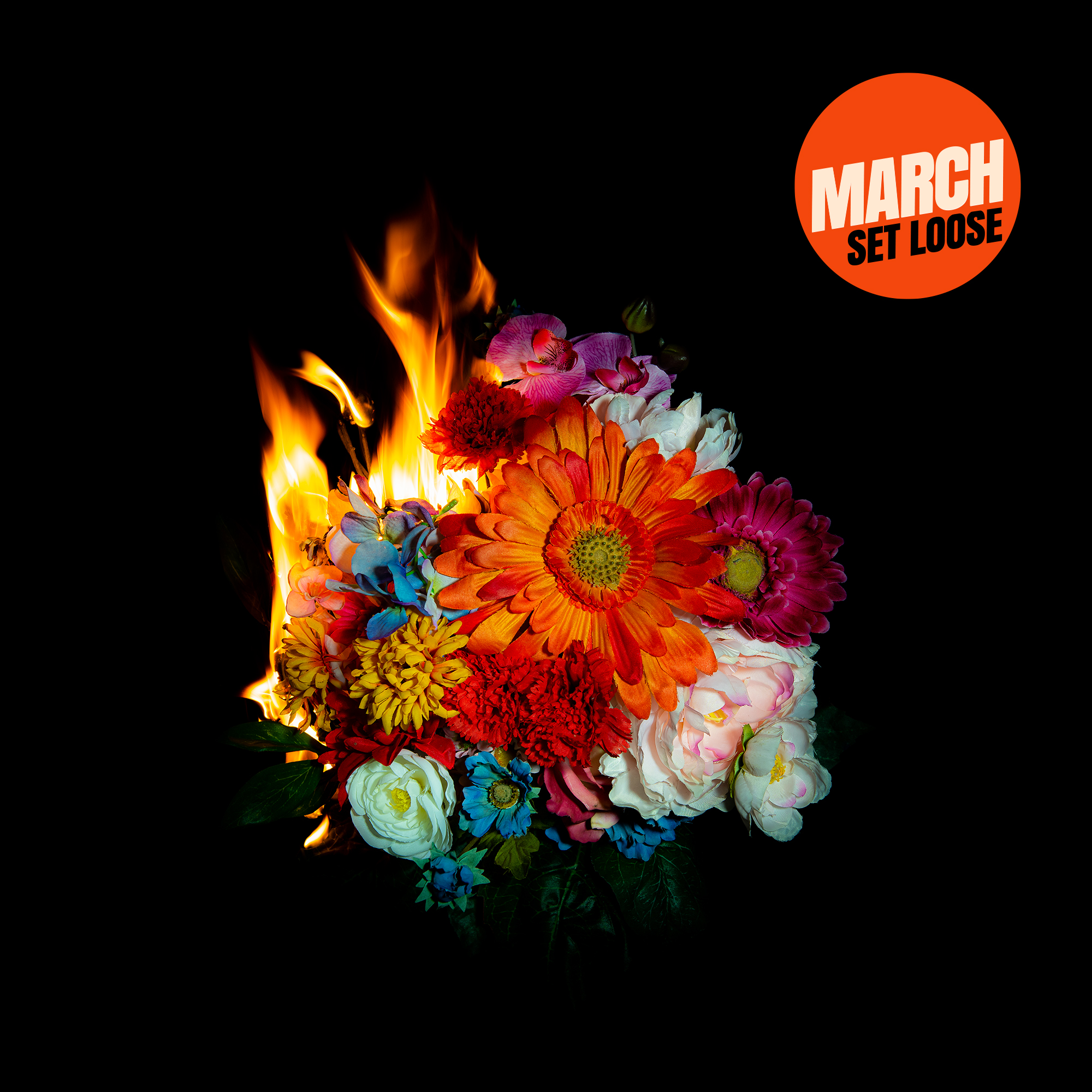 March – Set Loose